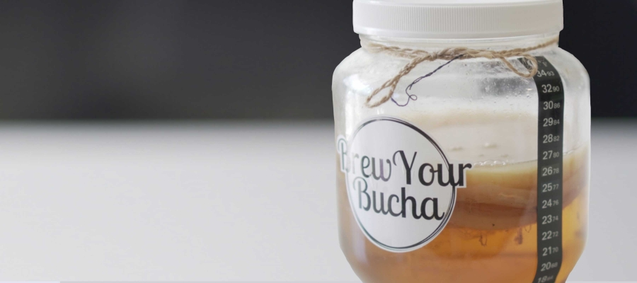 #68 Kombucha: Tea of Immortality